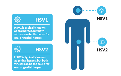 hpv virus and herpes que es papiloma intraductal de mama