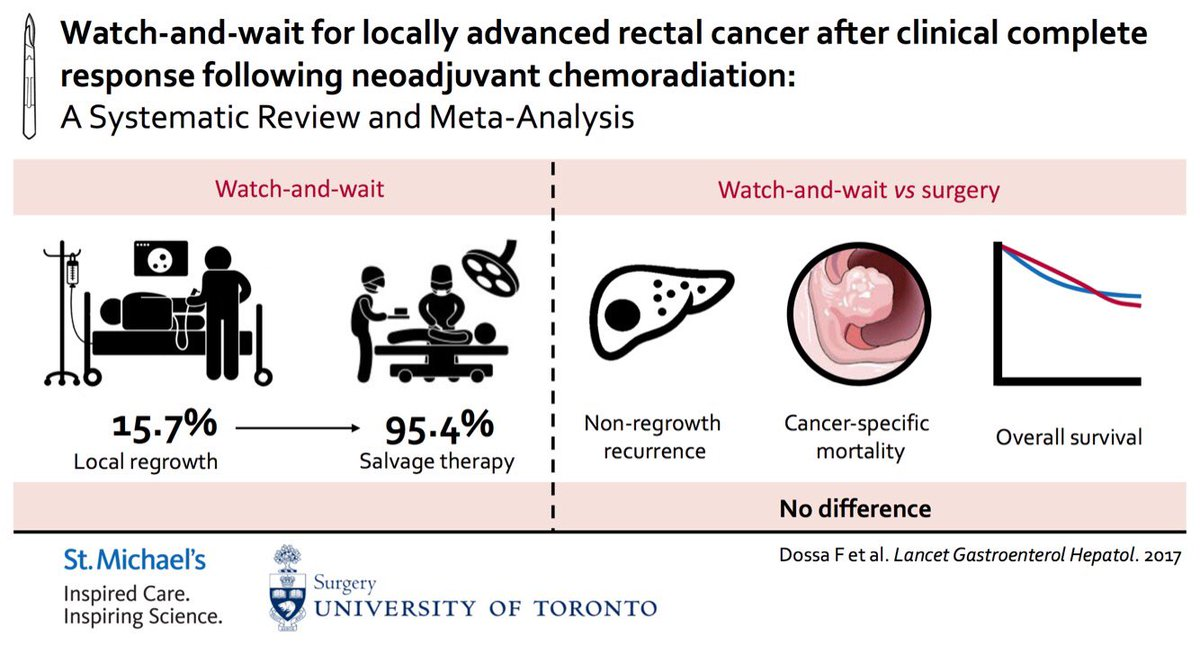 rectal cancer watch and wait