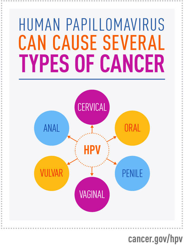 hpv causes what cancer in males