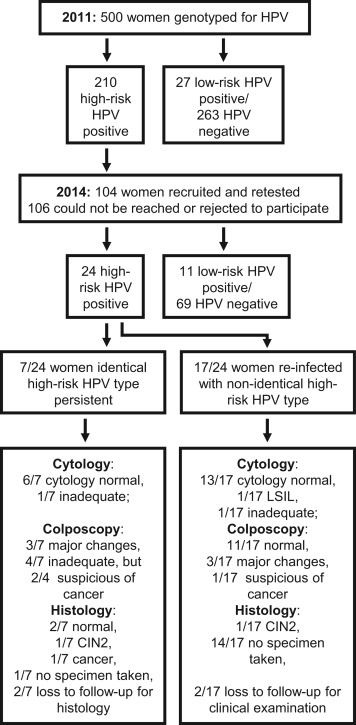 hpv high risk what to do