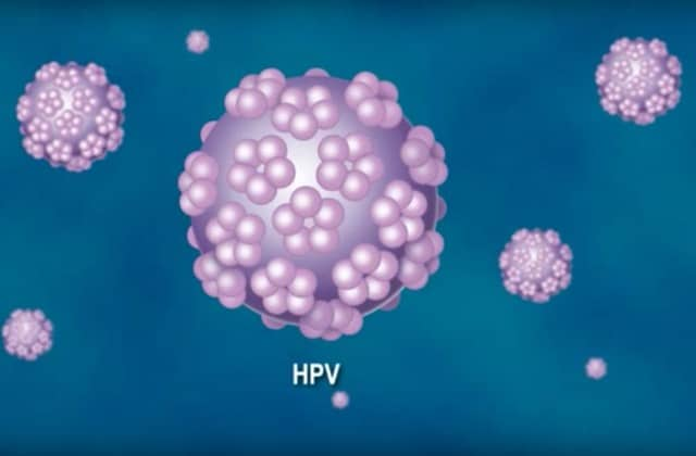 vaccin hpv pour garcon neuroendocrine cancer hereditary