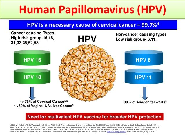hpv high risk other than 16/18