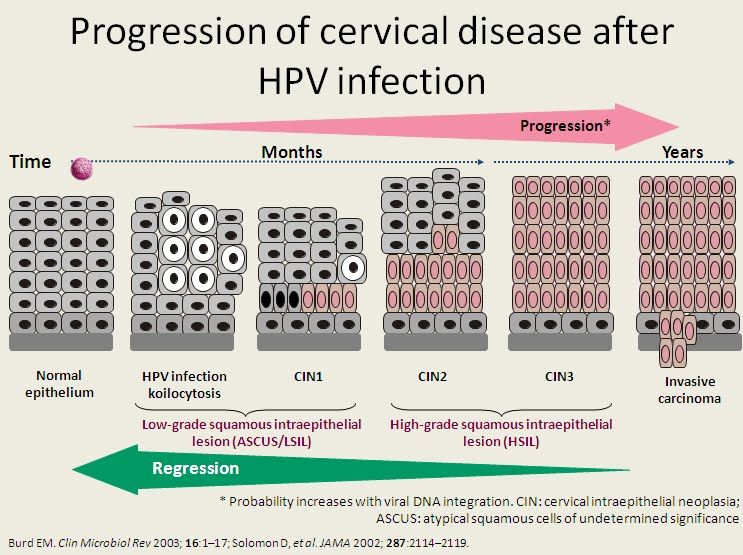 hpv treatment in homeopathic is hpv and precancerous cells the same