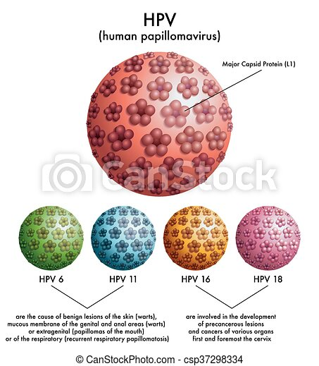 genetic cancer definition hpv chez lhomme